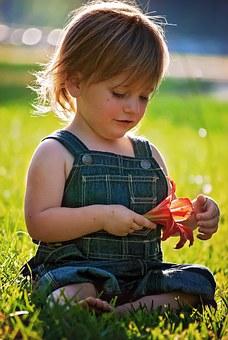 Petit garçon jardin